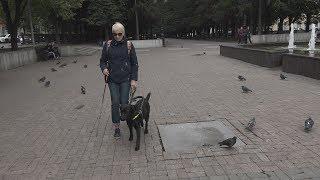 UTV. Недоступная среда. Почему люди с собаками поводырями чувствуют себя лишними в Уфе