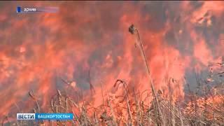 В башкирском Зауралье сохраняется чрезвычайный пятый класс пожароопасности