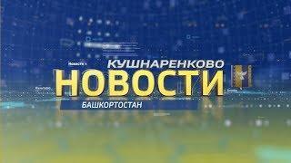 Новости Кушнаренково 31 05 2019 г.
