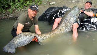 Сом ГИГАНТ! Самая большая рыба в жизни. Рыбалка на трофейного сома!