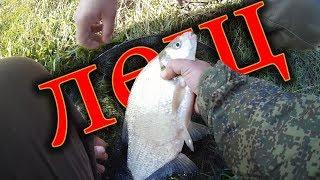 ловля леща на фидер.  р ИК. рыбалка в Башкирии.