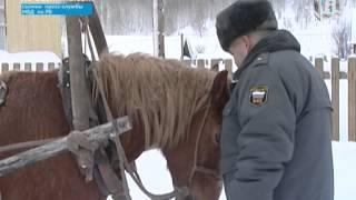 В Аскинском районе Башкирии современному Анискину