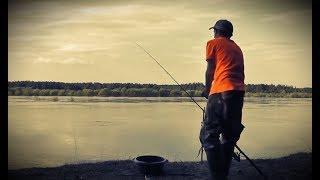 Весенняя рыбалка непредсказуема! ЧТО СКАЖЕТ НОЧЬ? Пробуем фидер - Б.Р. №669