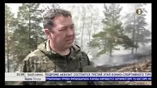 Локализация лесных пожаров!