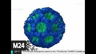 России создают оперативный штаб для контроля за коронавирусом - Москва 24