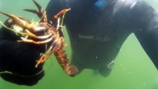 Подводный мир озера Талкас