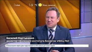 "В Башкирии создадут геопарк ""Торатау"""