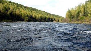 Река Койва 2015 timesat.ru