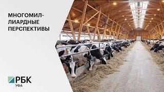 В молочной отрасли РБ в 2020 г. реализуют 9 инвестпроектов - на 23 млрд руб.