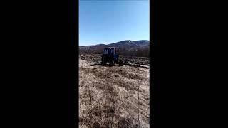 Лесхозы республики готовятся к республиканской акции «Зеленая Башкирия»