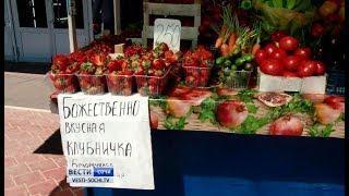 В Сочи начался сезон сбора клубники
