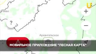 """Новости UTV. Приложение """"Лесная карта""""."""