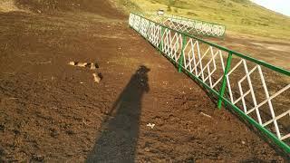 Башкирия. Стерлитамак. Гора Торатау