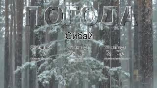 Погода в Сибае сегодня 27 января 2020. На завтра, неделю