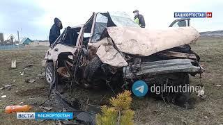 В Башкирии иномарка вылетела с дороги: водитель и двое пассажиров погибли на месте