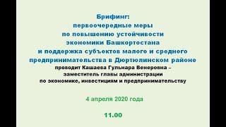 Брифинг: первоочередные меры по повышению устойчивости экономики Башкортостана и поддержка субъектов