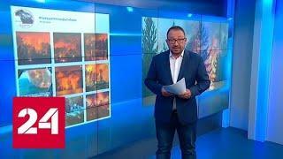 Спекуляции на пожарах: кто подогревает истерику блогеров? - Россия 24