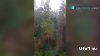 В Башкирии летом выпал снег