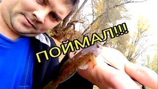 Первая осенняя рыбалка ????. Октябрь 2016г.