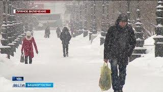 В Башкирии из-за сильного ветра и метели объявили штормовое предупреждение