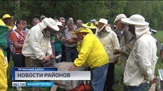 Подготовка к Апимондии в Иглино, сбор мусора в Баймаке и «Зарядка со звездой» в Толбазах
