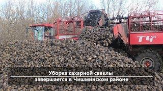 UTV. Новости центра Башкирии за 8 ноября