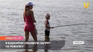 Новости UTV. Запрет на рыбалку