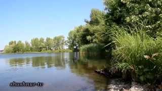 Кармановское водохранилище.