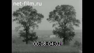 1983г. город Благовещенск. история тополей. Башкортостан