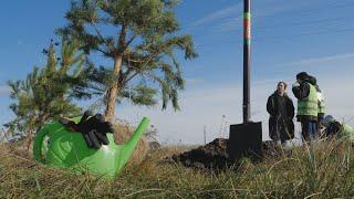 """UTV Под Уфой возле строящегося завода """"Башспирт"""" высадили 700 саженцев. Деревья стоят в форме курая"""