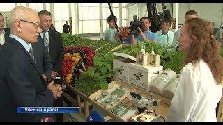 Глава Башкортостана оценил новый тепличный комплекс совхоза «Алексеевский»