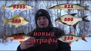 Штрафы за рыбалку 2019. Рыболовные правила 2019.Новые правила рыболовства 2019.Норма вылова рыбы.