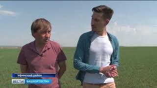 Вести-Башкортостан - 13.05.19