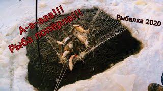Рыбалка на паук зимой! Чуть всю рыбу не проспал!!! Рыбалка на паук 2020!