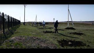 Куюргазинский район принял участие в экологической акции по посадке деревьев