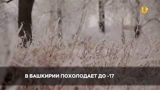 Новости UTV. В Башкирии в выходные похолодает