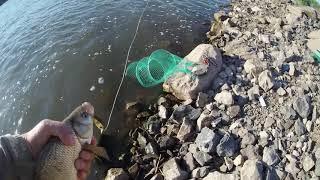 Очень много окуня.Рыбалка на шлюзе..Западный Казахстан. 8.06.2019
