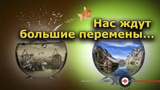 """""""Нас ждут большие перемены..."""". """"Персонально Ваш"""" Андрей Потылицын, 1.04.20 г."""