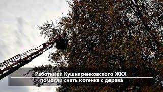 UTV. Новости центра Башкирии за 18 сентября