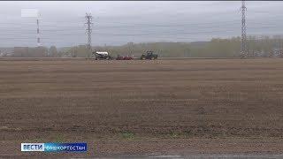 Из-за ранней весны в Башкирии сдвинулись полевые работы