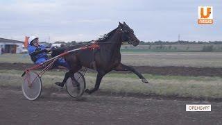 На ипподром Ташлинского района съехались лучшие конники региона, Самары и Башкирии
