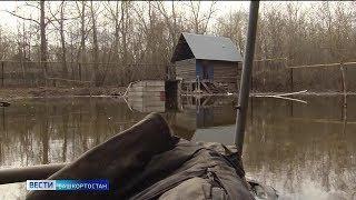 Уровень воды в главных реках Башкирии начал снижаться