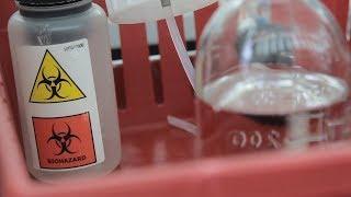 UTV. На конференции инфекционистов в Уфе рассказали о создании прививки против ВИЧ