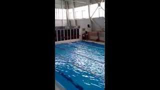 Новости Белебея - Соревнование по плаванию при поддержке управления социально развития