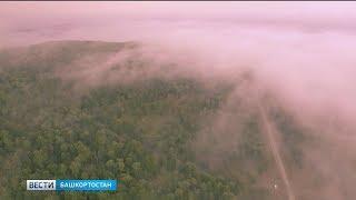 В Башкирии водителей предупреждают о тумане на дорогах