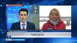 Метеорологи рассказали, каким будет паводок в Башкирии