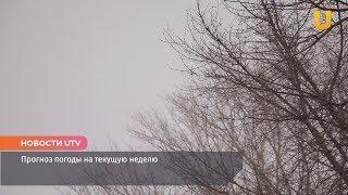 Новости UTV. Прогноз погоды на текущую неделю.