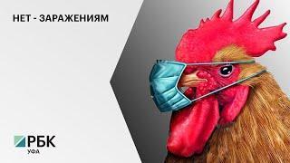 В Туймазинском районе изъяли и уничтожили 9 тысяч голов домашней птицы