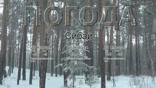 Погода в Сибае сегодня 28 января 2020. На завтра, неделю