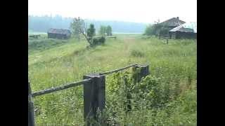 Уральская тайга: деревня Вагильская.mpg